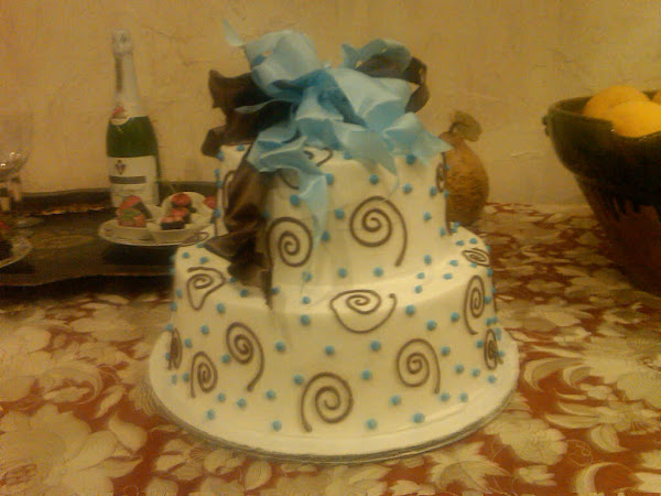 BlueBrown_Swirlee_Dot_Wedding61
