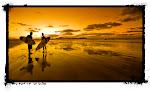 TIENDA DE SURF ORCA SURF SHOP