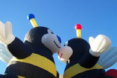 Bee Kiss, Albuquerque Balloon Fiesta