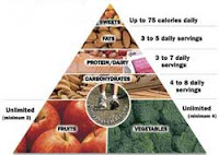 Child nutrition, programs