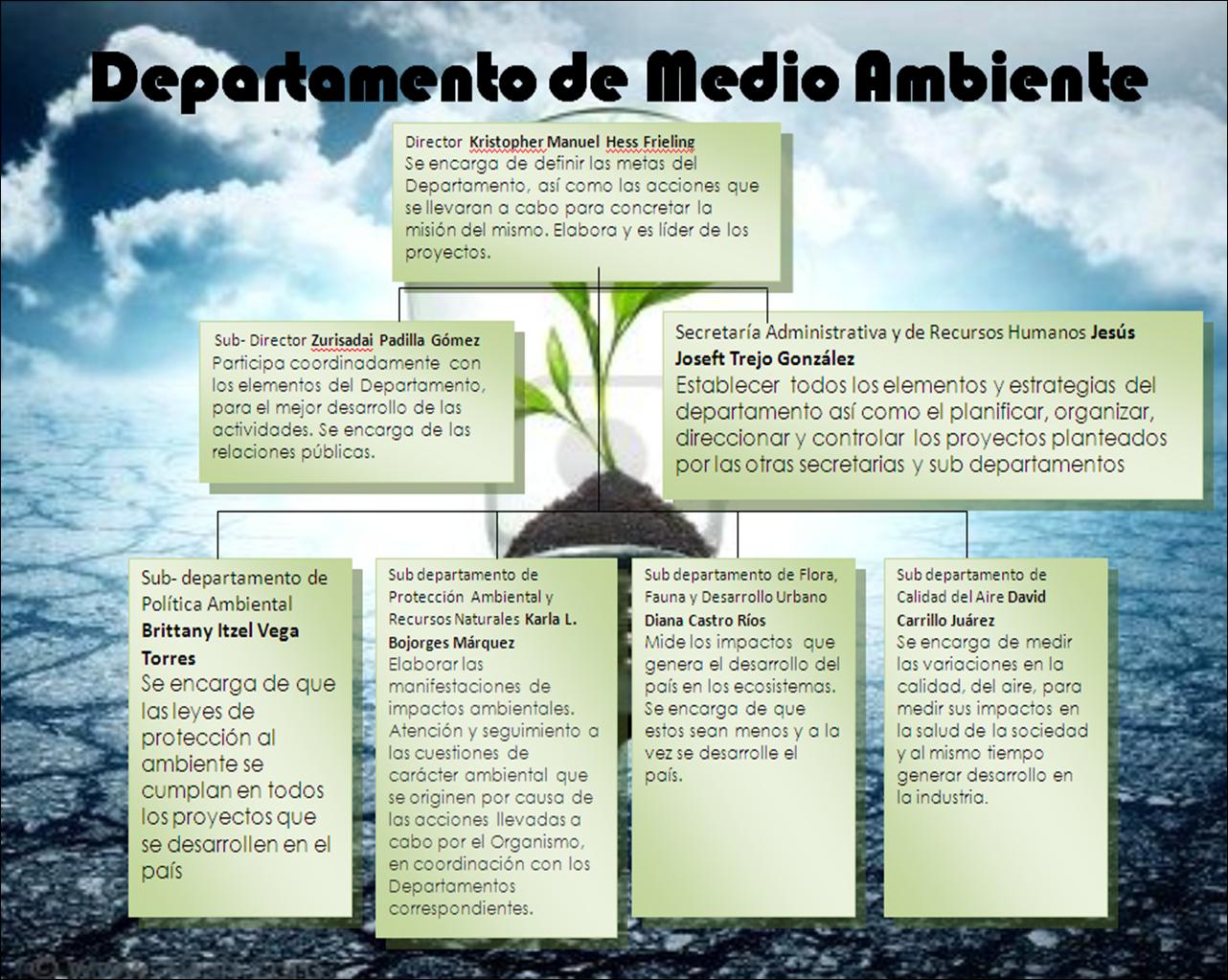 Departamento de medio ambiente organigrama for Oficina de medio ambiente