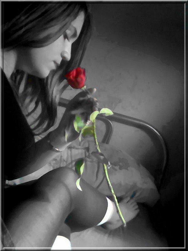 desahogo de la rosa