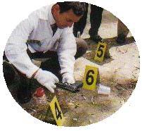 INSPECCION   CRIMINALISTICA     En la escena del crimen