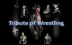 Imagen Tribute of Wrestling