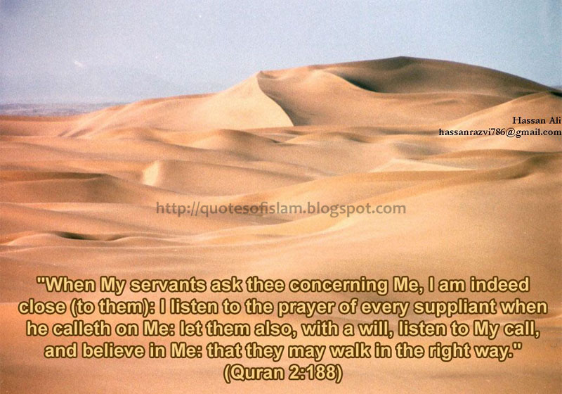 islamic quotes 5 beautiful hadiths from holy quran and