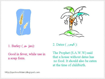 Slide3 - 12 Favorite Foods of Prophet Mohammad (PBUH)