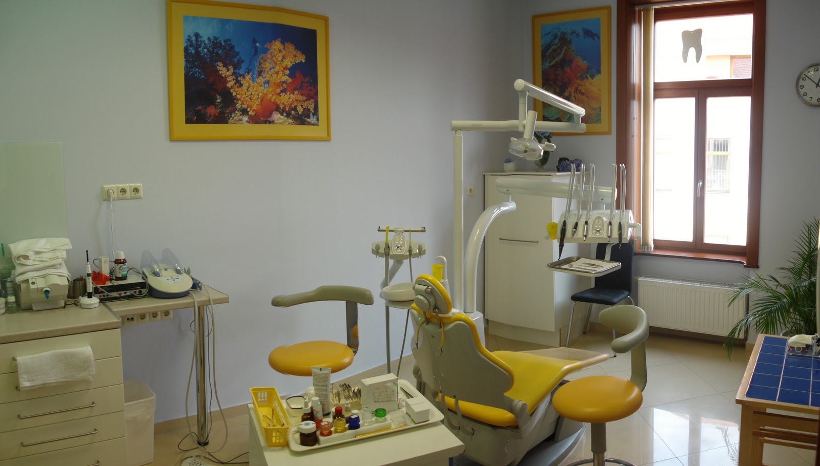 why i decided to take up the profession of dentistry They are asking more questions regarding dentistry, and if we as a profession are not there to guide and  were decided and what  discussed up at the.