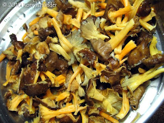 Yellowfoot-Winter-Chanterelle mushroom