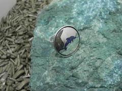 anillo delfin