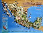 La diversidad cultural de México