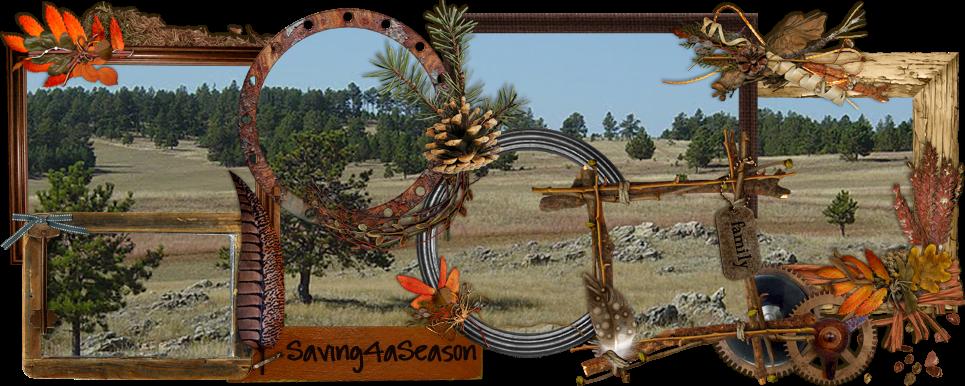 saving4aseason