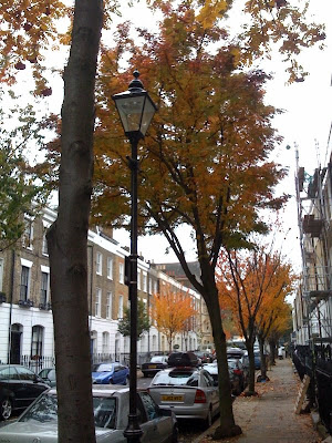 iPhone-London-trees