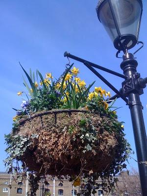 Flower+pot