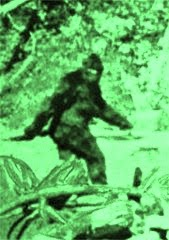 A Paranormal Sasquatch blog