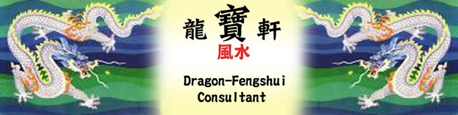 DRAGON-FENG SHUI CONSULTANT