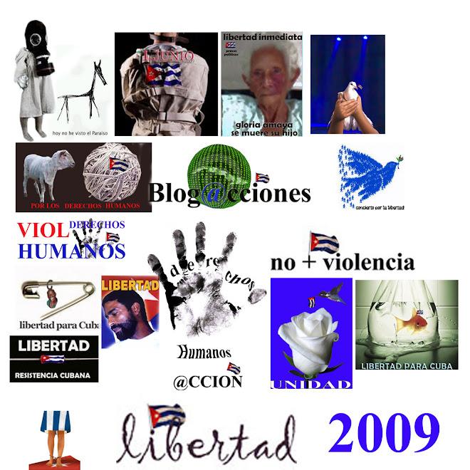 lo que hicimos en el 2009