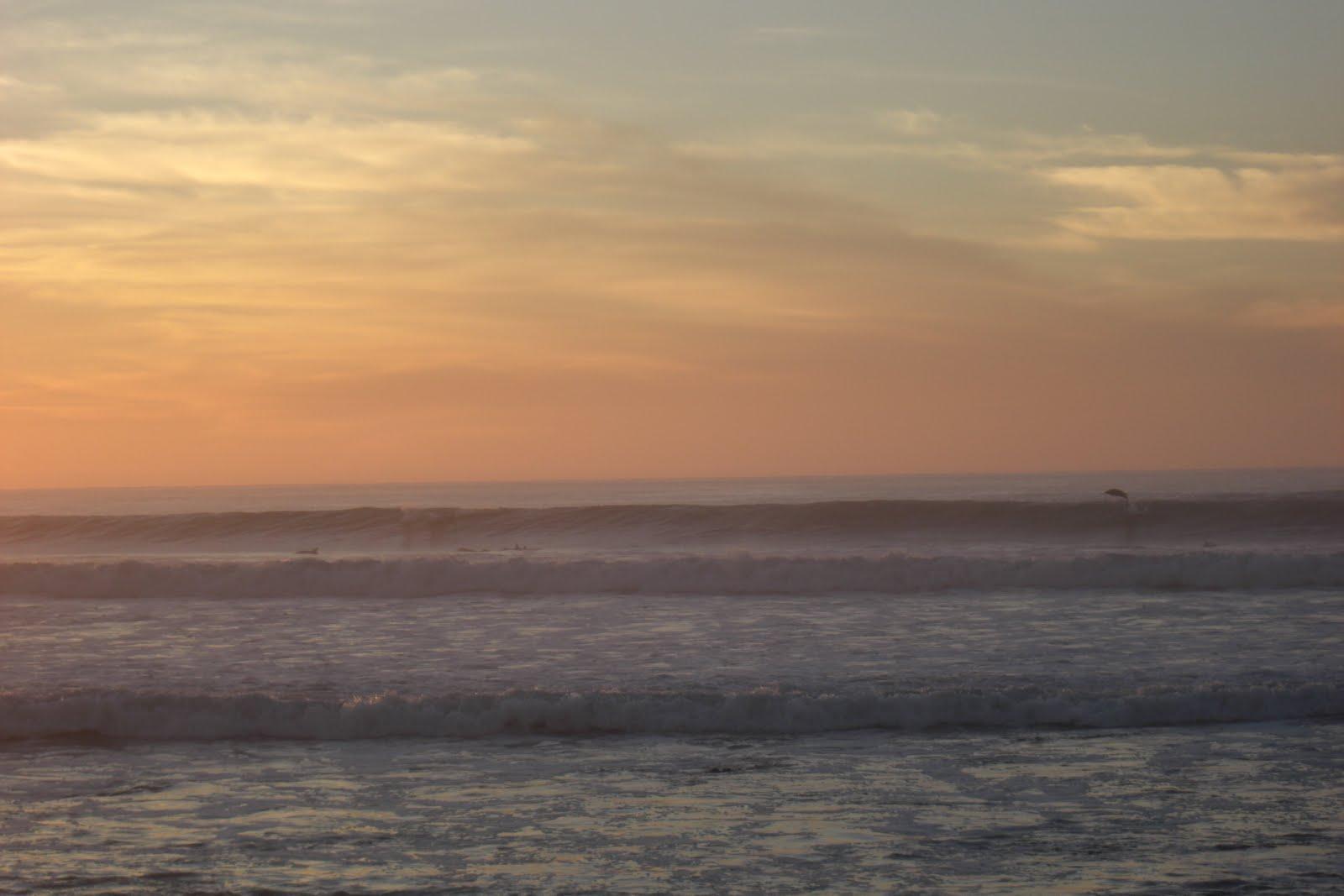 http://3.bp.blogspot.com/_hsRBNGACArA/S74FyNIO6bI/AAAAAAAAAZU/C6rJuR-It6o/s1600/jumping+dolphins+046.JPG