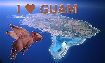 Guam swine flu