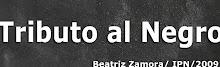 TRIBUTO AL NEGRO - Beatriz Zamora