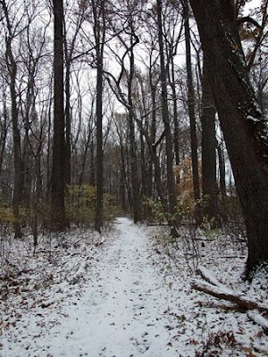 """a literary analysis of stopping by woods on a snowy evening by robert frost The poem, """"stopping by woods on a snowy evening"""" by robert frost is one that appears rather simple the speaker is walking through the woods that have been."""