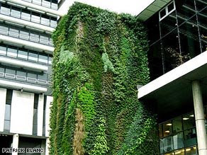 The massive wall of brilliant green foliage at the Musée du Quai Branly, Paris, features an 8,600 square feet plant installation by the designer Patrick Blanc.  The installation includes more than 170 different plant species