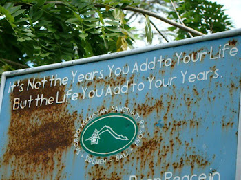 שלט  שניצב באחד היערות בצפון באלי