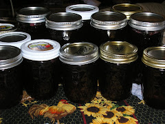 Home Canned Jelly