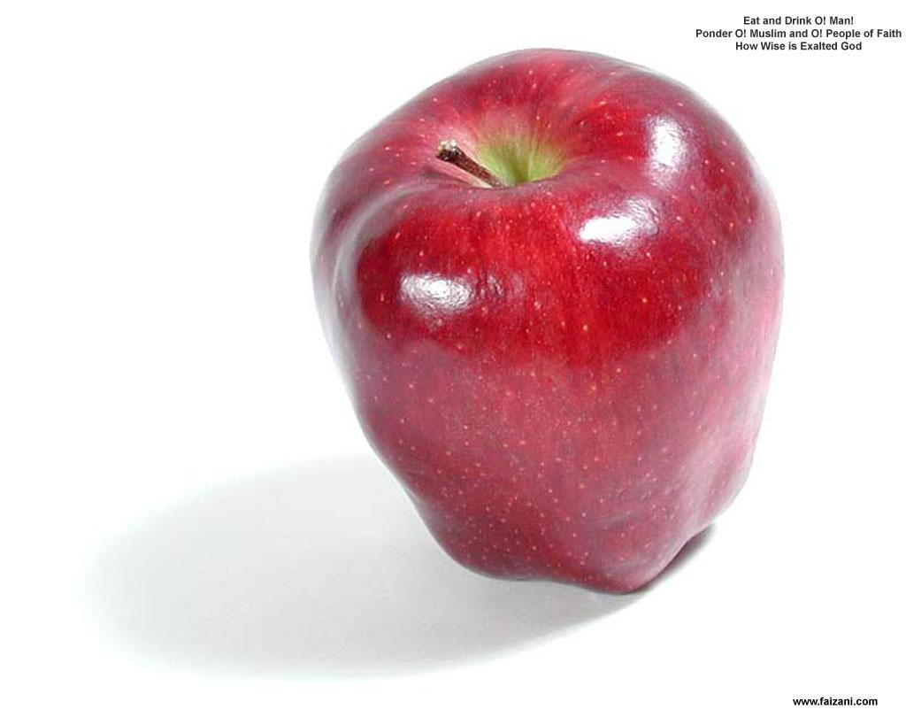 http://3.bp.blogspot.com/_hx1af7I13yo/SwVMCsW5wYI/AAAAAAAAASk/sAAp1cjJtVg/s1600/fruitApple1c4.jpg