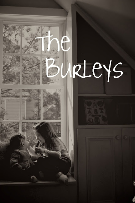 The Burleys