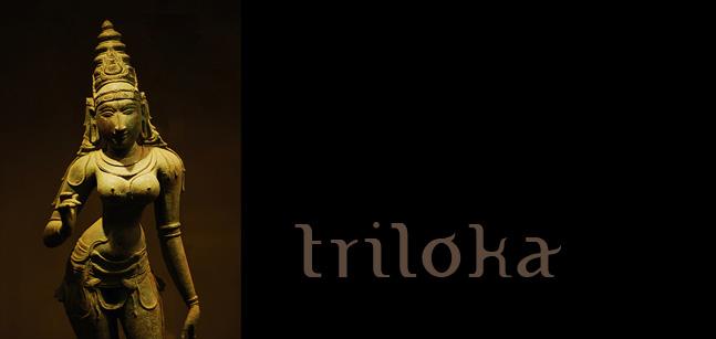 Triloka, cours Bharatanatyam Paris, Shalini danseuse professeur de Bharatanatyam