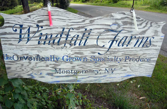 Windfall Farms