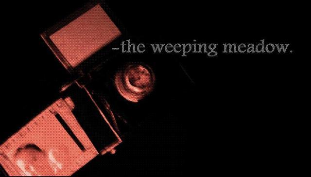 Weeping Meadow