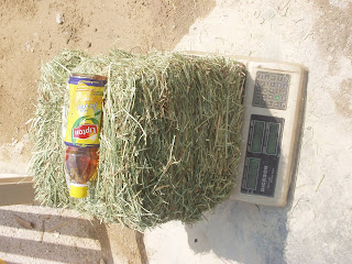 Mini Bale Grass Hay 10kg