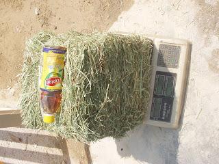 Mini Bale Grass Hay 10kg