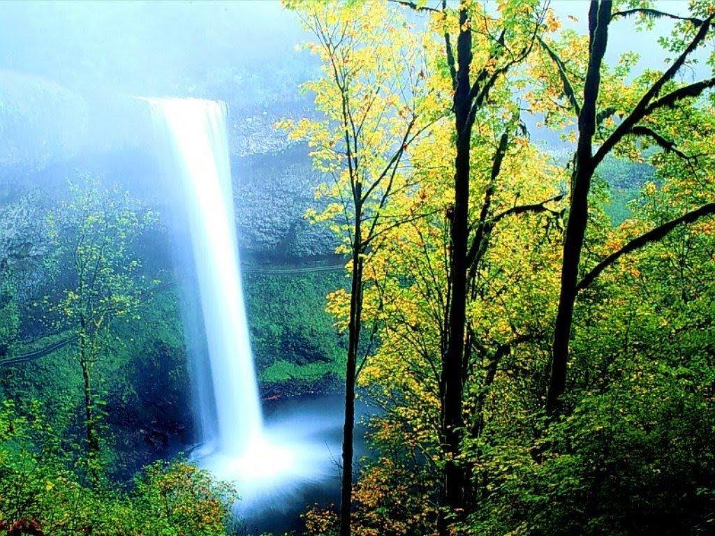 Oregon Waterfalls Silver Falls State Park