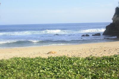 beach nice foto art