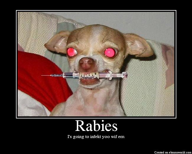 [Rabies.png]