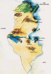 PESSAH HAG SAMEAH EN TUNISIE