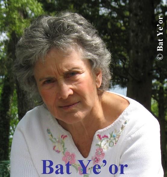 Image result for Bat Ye'or