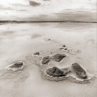 Brandon Allen Photography - Great Salt Lake - Black and White Photography - Hasselblad 500cm