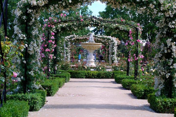 Mad daily photo la rosaleda del retiro for Fotos de jardines bonitos