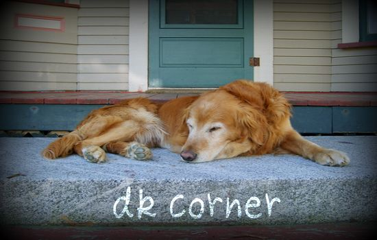 DK Corner