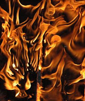 Reduced fertility linked to flame retardant exposure