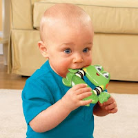 Bright Starts Frog Car Seat Toy Battery