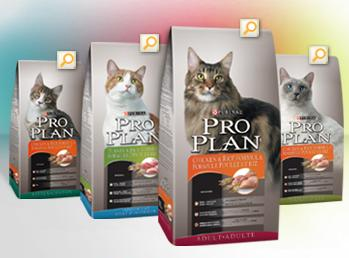 Purina One Dry Cat Foods Contain How Much Phosphorus