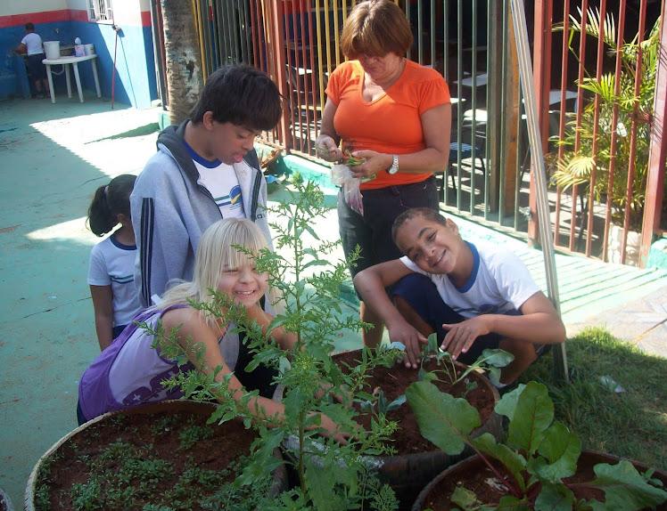 A Horta da Escola