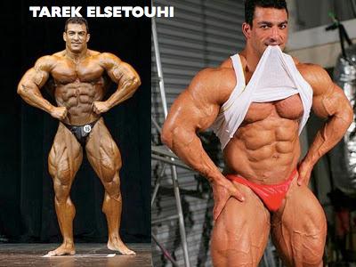 TAREK ELSETOUHI bodybuilder