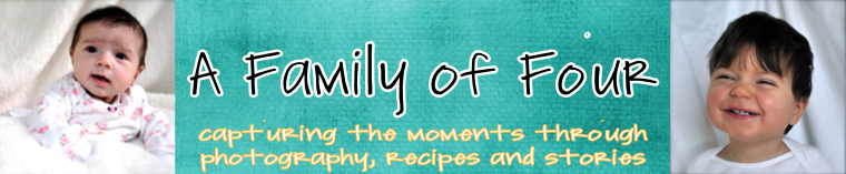 a family of four:  capturing the moments