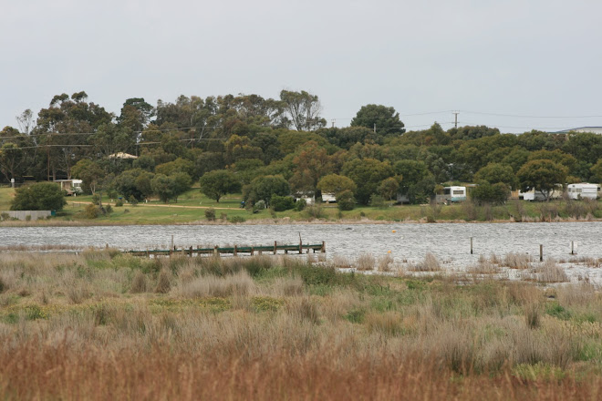 The Caravan Park from across the Bay