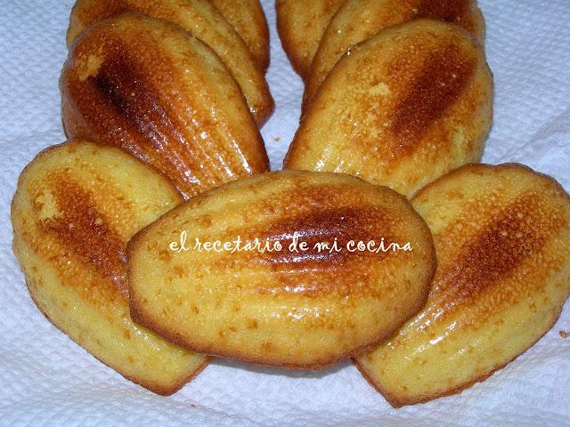 magdalenas concha o madeleine de commercy